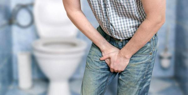 Лечение простатита корректорами уродинамики животного происхождения