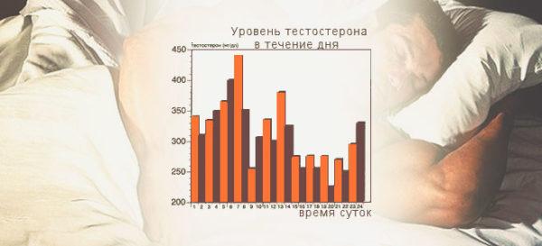 Уровень тестостерона в течение дня