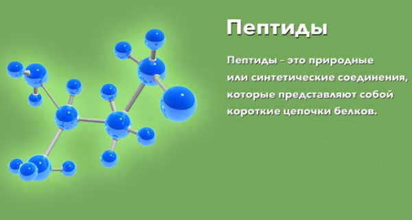 Пептиды невероятно важны для правильного функционирования организма