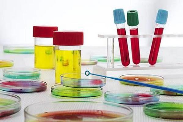 Анализы крови и мочи необходимы для первичной диагностики различных болезней