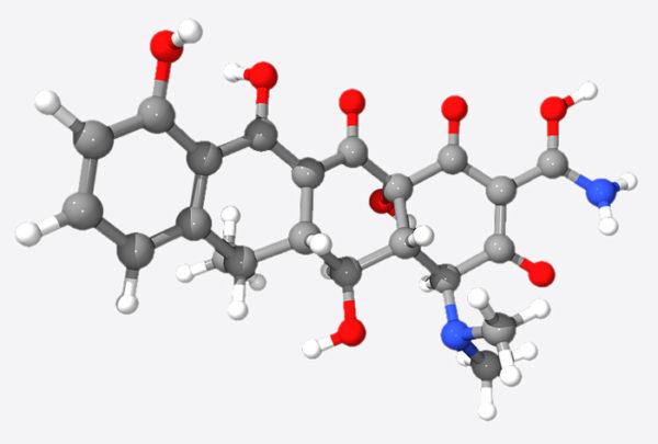 Доксициклин хорошо всасывается ЖКТ и начинает работать уже спустя полчаса после попадания в организм