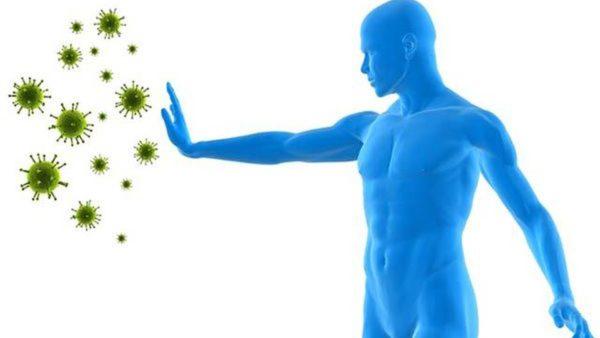Этот гормон также участвует работе иммунной системы