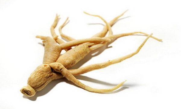 Вещества, способные повышать потенцию, содержатся в корне растения