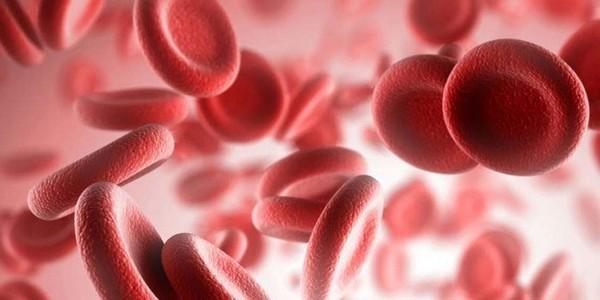 Выделяют несколько типов агрегации тромбоцитов