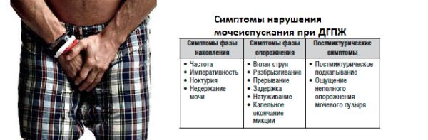 Симптомы ДГПЖ
