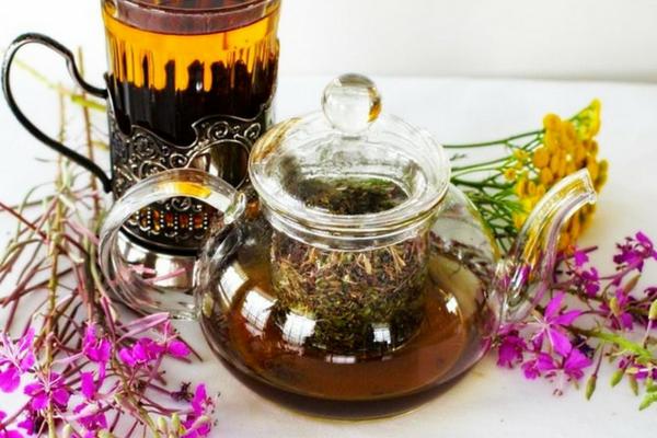 Иван-чай снижает активность вирусов герпеса и вируса папилломы человека