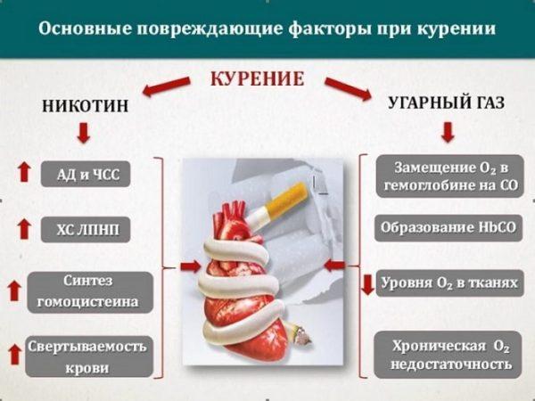 Повреждающие факторы