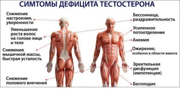 Схематичное изображение влияния низкого тестостерона на состояние здоровья