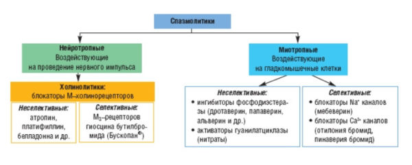 Спазмолитики - классификация