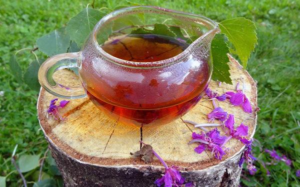 Для приготовления чая используется все растение за исключением корня