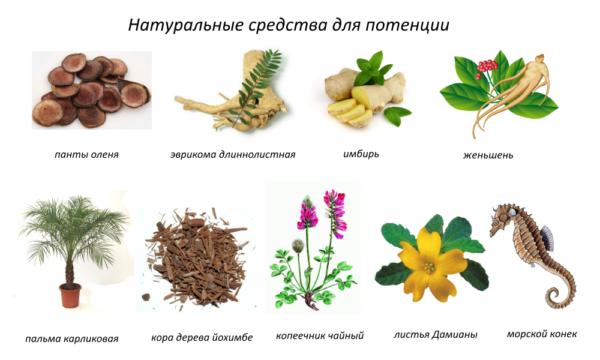 Природные компоненты, которые содержатся в составе препаратов, почти не дают побочных эффектов