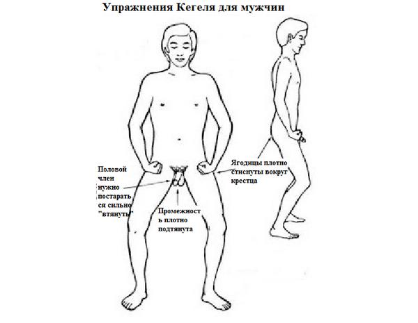 Поза для выполнения упражнений Кегеля