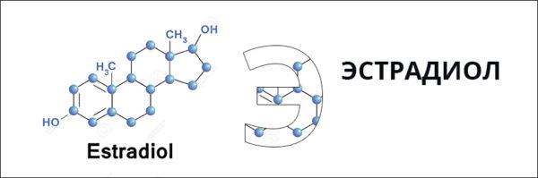В плаценте и яичниках образуется эстрадиол
