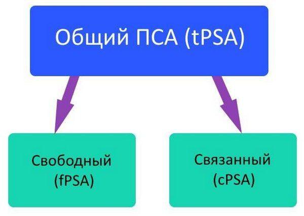 ПСА бывает двух разных видов