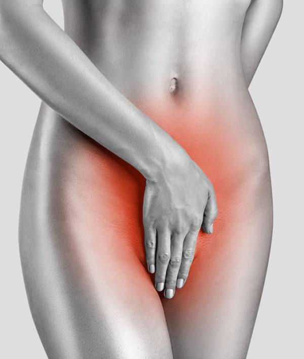 Рецепторы вагины особо чувствительны к тестостерону