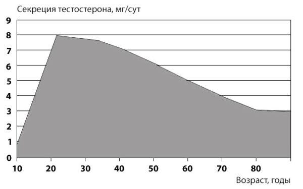Динамика секреции тестостерона