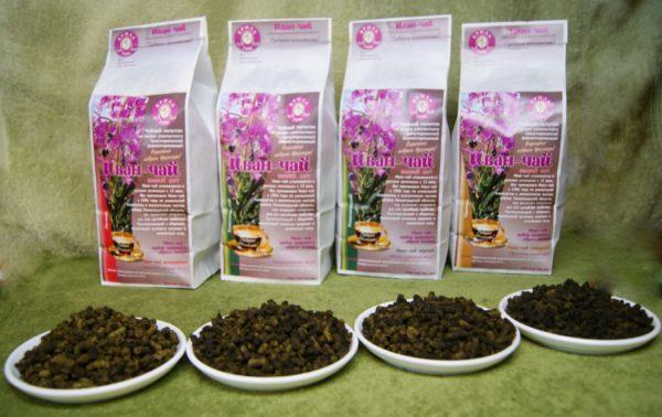 Иван-чай – полезные свойства