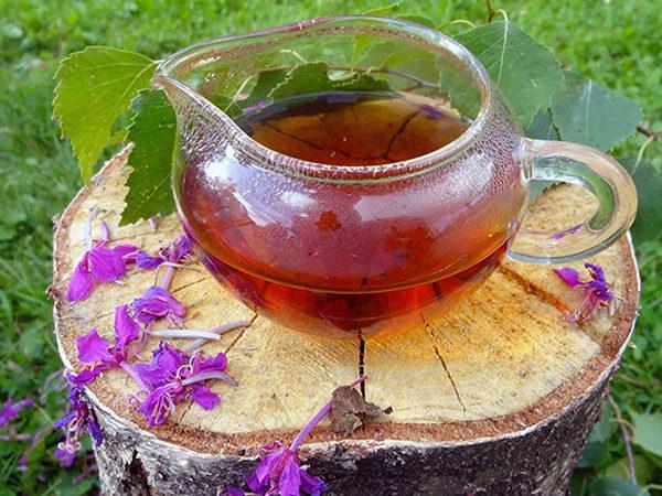 Отвар из Иван-чая