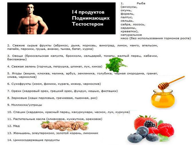 Продукты поднимающие уровень тестостерона