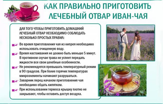 Отвар из Иван чая