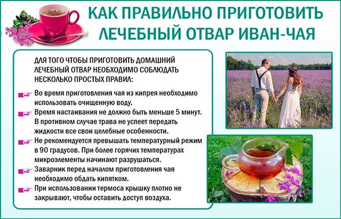 Лечебный отвар из иван-чая